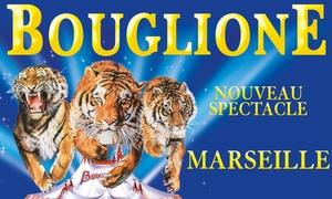 CIRQUE D'HIVER BOUGLIONE: 1 place pour le cirque d'hiver Bouglione, du 8 au 10 décembre 2017, catégorie au choix,dès 10 € à Dijon