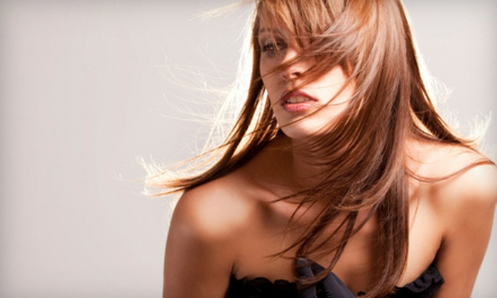 Mélange: A Modern Salon - Olive Branch: Conditioning, Haircut, or Hair-Coloring Package at Mélange: A Modern Salon in Olive Branch (Half Off)