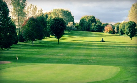 18 Holes of Golf for Two with Cart Rental and Lunch - Arkona Fairways Golf Course in Arkona