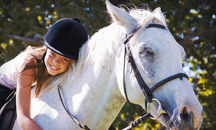 Los Vientos Equestrian Centre - Langley: One or Four Private Horse-Riding Lessons at Los Vientos Equestrian Centre (Up to 56% Off)