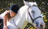 Los Vientos Equestrian Center - Langley: One or Four Private Horse-Riding Lessons at Los Vientos Equestrian Centre (Up to 56% Off)