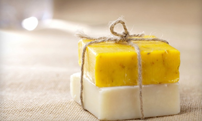 The Berea Water Group - South Keys - Heron Gate - Greenboro West: $39 for an Eco-Friendly Soap Package from The Berea Water Group