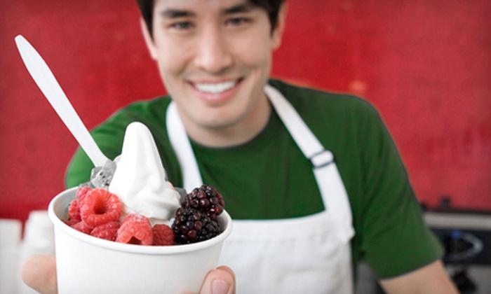 Lachelle's Frozen Yogurt - Marrion: Self-Serve Frozen Yogurt at Lachelle's Frozen Yogurt in Vancouver (Half Off). Two Options Available.