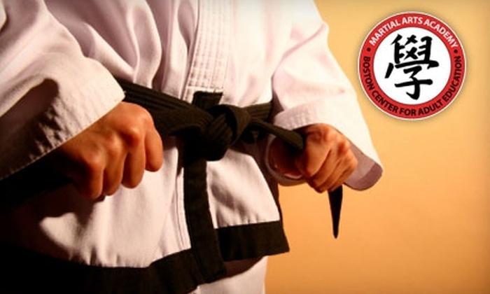 Boston Center for Adult Education - Bay Village: $99 for a Daylong Multidisciplinary Martial Arts Workshop at the Boston Center for Adult Education ($199 Value)