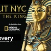 45% Off King Tut Exhibit