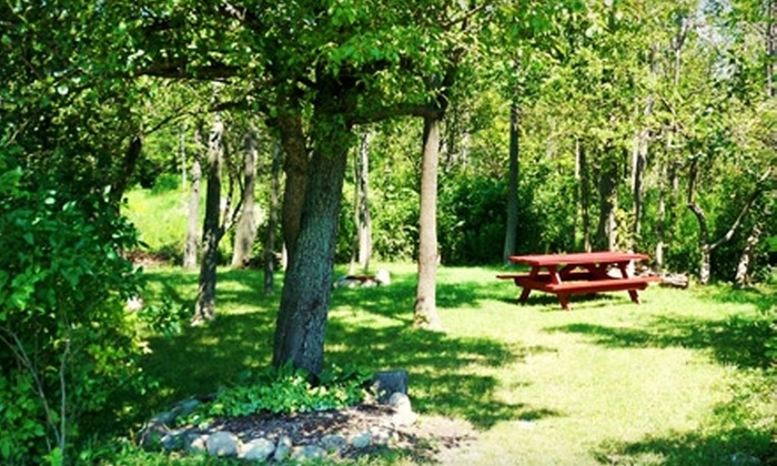 Cherry Hill Campground - Darien Center: $24 for One Night of Camping at Cherry Hill Campground in Darien Center (Up to $47 Value)