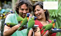 Currumbin Wildlife Sanctuary Entry for One ($29) or Two ($55) People (Up to $99.90 Value)
