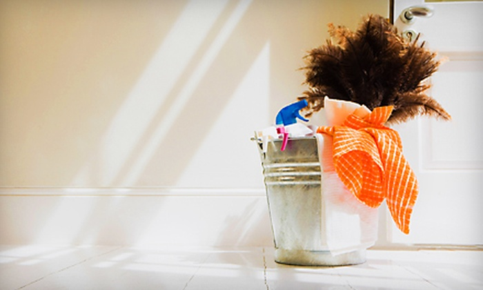Morning Star Property Services - Lady Lake: Two or Four Hours of House Cleaning from Morning Star Property Services