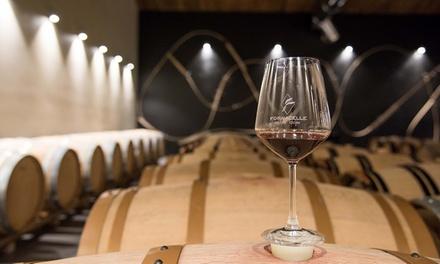 Degustazione di vino a Bolgheri a 19,90€euro