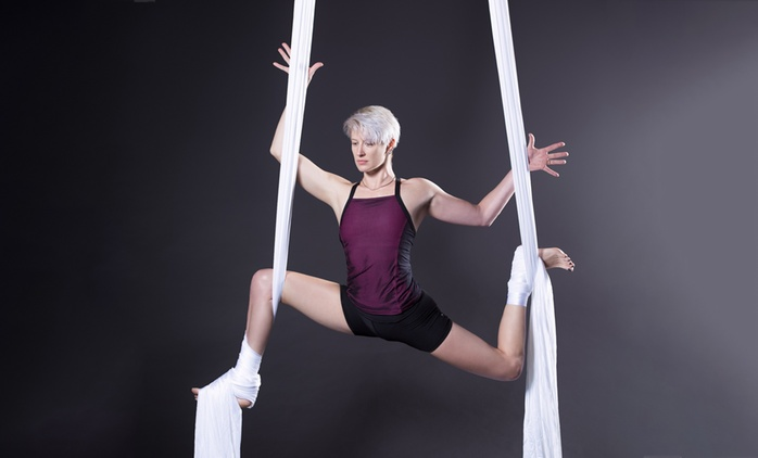 Aerial and Circus Arts Class - One ($19), Three ($54), Five ($83) or Ten ($155) at Aerialize, Canterbury (Up to $400)
