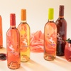 65% Off Moscato and Wine Tumblers from Afternoon Delight