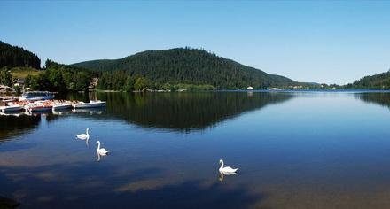 Promenade commentée en bateau sur le lac de Gérardmer pour 1 enfant ou 1 adulte dès 2 € avec Bateau L'Etoile