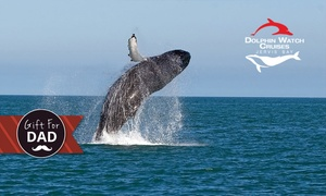 Dolphin Watch Cruises - Jervis Bay: Three-Hour Whale-Watching Cruise for Child ($15) or Adult ($32) with Dolphin Watch Cruises, Huskisson (Up to $65 Value)