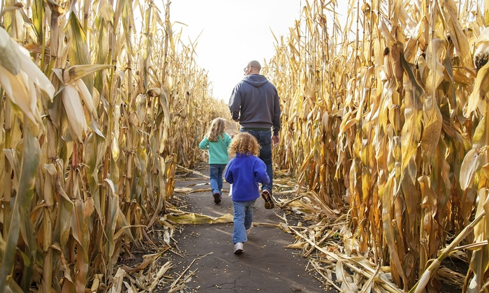 Sahl's Father Son Farm Corn Maze - Egg Harbor City: Admission for Two or Four at Sahl's Father Son Farm Corn Maze (44% Off)