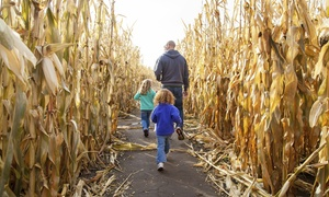 Sahl's Father Son Farm Corn Maze: Admission for Two or Four at Sahl's Father Son Farm Corn Maze (44% Off)