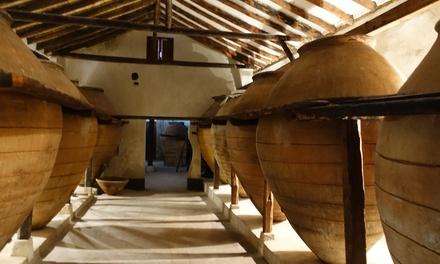 Visita a bodega con cata y opción a viaje en tren turístico para 2 o 4 desde 11,95 € en Bodega del Nero