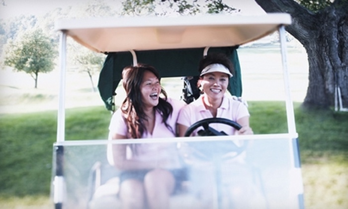 Beeches Golf Club - Geneva: Eighteen Holes of Golf and Cart Rental at Beeches Golf Club in South Haven. Choose Between Two Options.