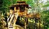 Gers:1ou2N cabane spa,carré étoile,roulotte avec pdj,bain remous,sauna