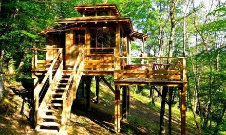 Occitanie : 1,2 nuits en cabane spa ou carré étoile ou roulotte avec pdj,bain remous et sauna pour 2 au Domaine d'Escapa