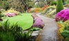 Abkhazi Garden - Gonzales: $20 for Admission and Tea for Two at Abkhazi Garden ($40.82 Value)