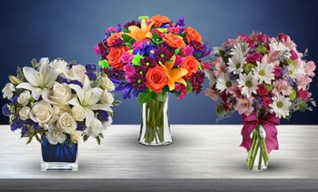 50% Off Flowers from Blooms Today