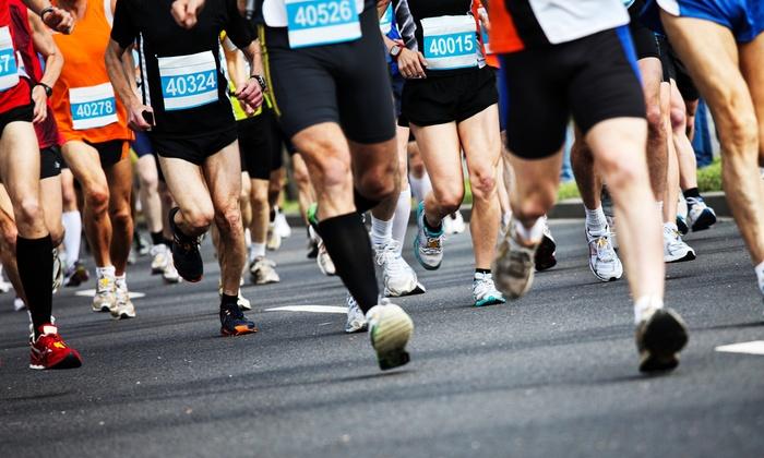 Bucks County Half Marathon - Northampton: Registration for One or Two to the Bucks County Half Marathon on Sunday, April 13, 2014 (Up to 65% Off)