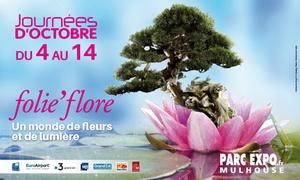 Pass aux journées d'Octobre et Folie'Flore