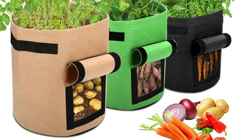 1, 2 o 4 contenitori per la coltivazione di patate, ravanelli, carote e cipolle, in 3 colori, con spedizi