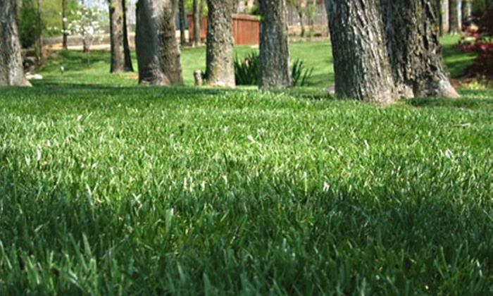 LawnAmerica - Multiple Locations: Lawn Aeration for Up to 6,000 or 12,000 Square Feet from LawnAmerica