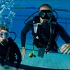 Up to 60% Off Scuba Courses in Middletown