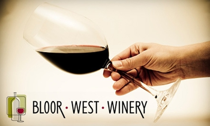 Bloor West Winery - Stonegate - Queensway: $69 for a Winemaking Experience and 30 Bottles of Wine from Bloor West Winery ($138 Value)