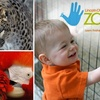 Up to Half Off at Lincoln Children's Zoo