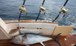King Fisher Tours Leisure Yachts Boats Rental: Private Four-Hour Fishing Trip with Optional Barbecue for Up to Six People with King Fisher Tours