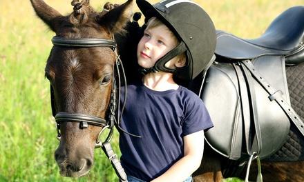 Balade à poney de 30 ou 60 min avec préparation et brossage pour 1 ou 2 enfants dès 4,90 € aux Écuries du Mas
