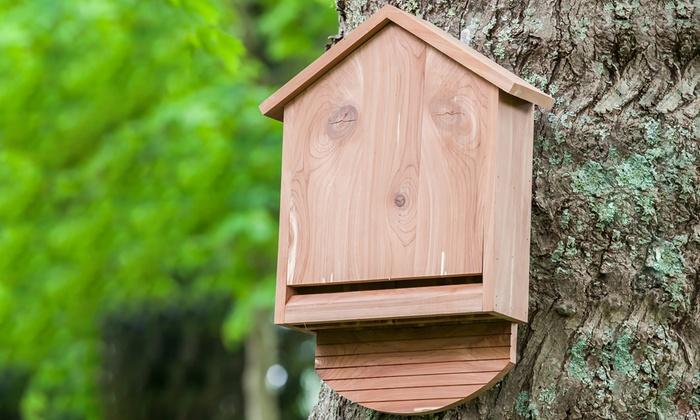 2-Chamber Cedar Wood Bat House
