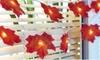 Guirlande lumineuse 10 LED feuilles d'érables