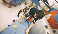 Stage à la journée, pendant les vacances scolaires,d1h à 1h30 descalade pour enfants dès 6,90 € à Arkose Bordeaux
