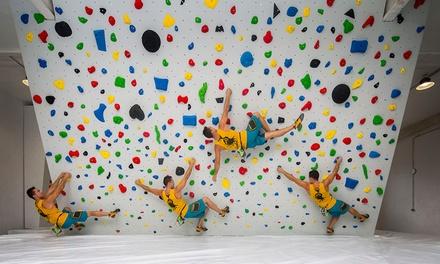 Bautismo o cursos o juegos de escalada indoor para adultos o niños desde 5,99 € en Bulderplanet