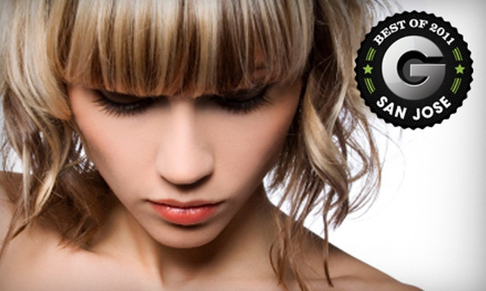 Main St Annex Salon - San Jose: Haircut-and-Blowout Package with Conditioning or Highlights at Main St Annex Salon in Los Gatos (Up to 64% Off)
