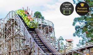 Acqua Lokos Parque Hotel: Acqua Lokos Parque Hotel – Capão da Canoa: passaporte para 1 dia
