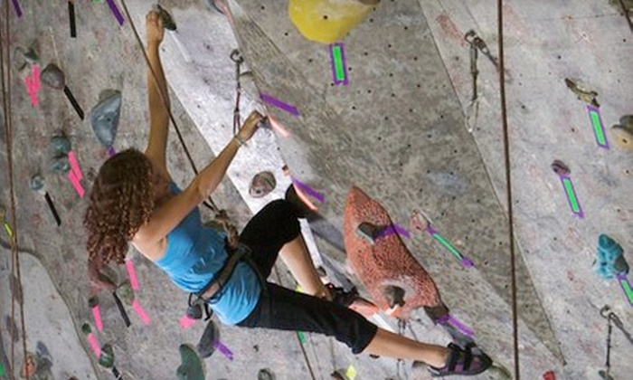 Vertical Adventures - Busch: Introductory Rock-Climbing Class and Month Pass or Five Day-Passes at Vertical Adventures