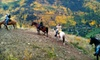 Vail Stables - Vail: $30 for $60 Toward a Guided Horseback Trail Ride from Vail Stables