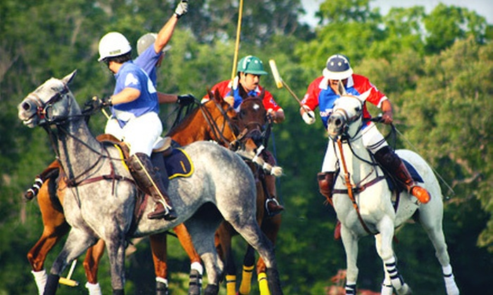 Stonebriar Polo Club - Crescent Oaks Beach Estates: One, Two, or Four Private Polo Lessons at Stonebriar Polo Club in Oak Point (Up to 75% Off)