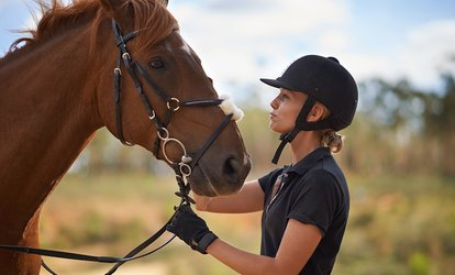 image for 60-Minute Pony Play Session or up to Four Group Riding Lessons at The Freedom Centre (Up to 50% Off)