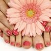 Mini Gel Manicure or Pedicure