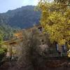 Albacete: 1 o 2 noches con desayuno y detalle de bienvenida