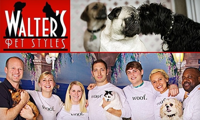 Walter's Pet Styles - Kips Bay: $30 for $65 Toward Grooming at Walter's Pet Styles