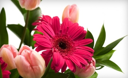 $50 Groupon to Touched by Flowers - Touched By Flowers in