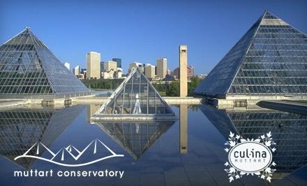 Muttart Conservatory - Muttart Conservatory in Edmonton