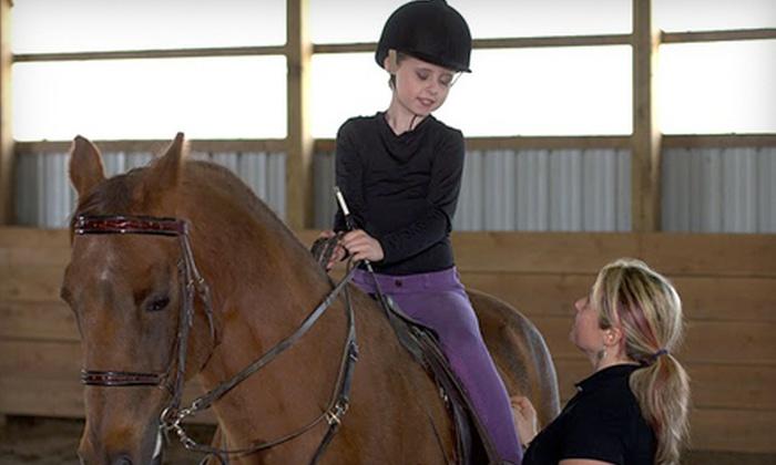 Trinity Morgan Farm - Broadalbin: $35 for a Horseback-Riding Lesson at Trinity Morgan Farm in Broadalbin ($70 Value)